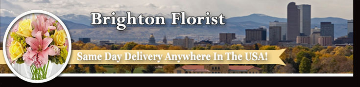 Brighton Colorado Florist